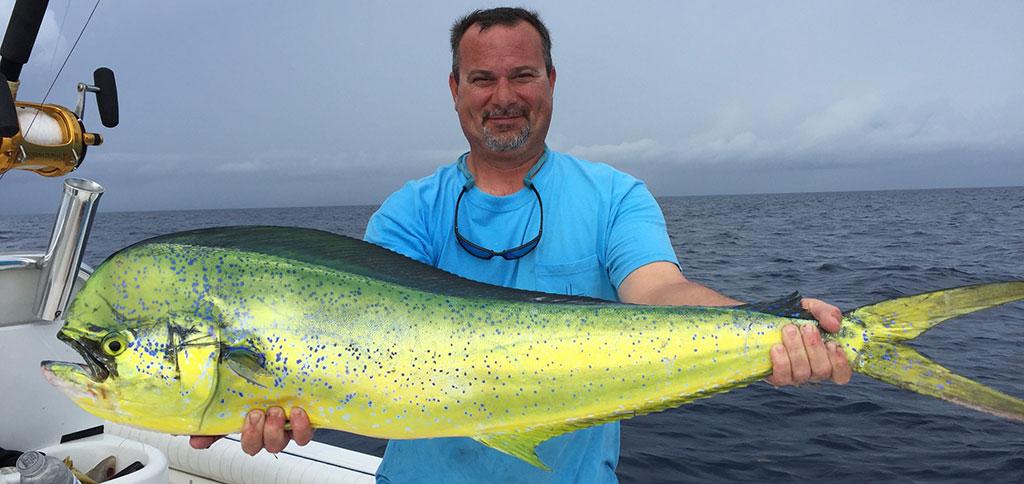 Mahi Mahi in the Florida Keys - That is alot of food!
